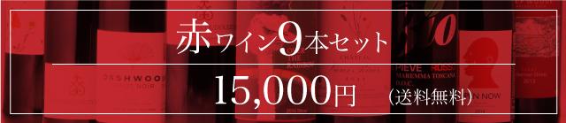 赤ワイン 9本セット 15,000円(送料無料)
